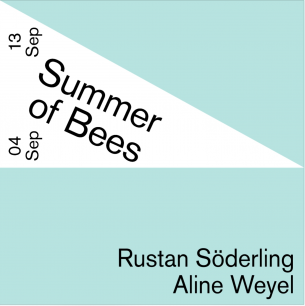 Summer of Bees By Rustan Söderling & Aline WeyelOpening on 4th September 6-9 PM