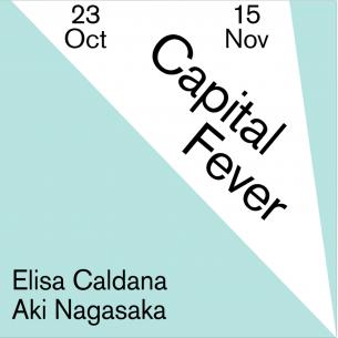 Capital Fever (online exhibition) by Elisa Caldana & Aki Nagasaka 23 October - 15 November 2020