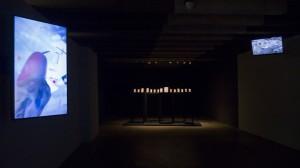 exhibition view FOA 3
