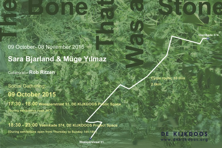 exhibition by Sara Bjarland & Müge Yılmaz